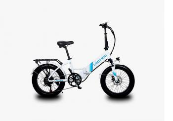 Lectric Bike